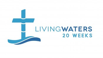 20 Weeks Logo - Copy (2)